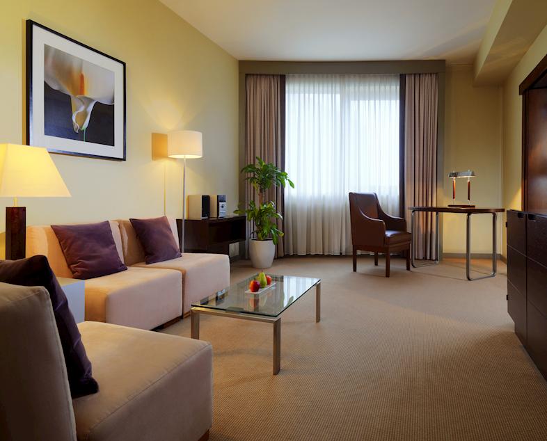Salon w apartamencie Junior Suite